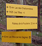 Typical walk signage